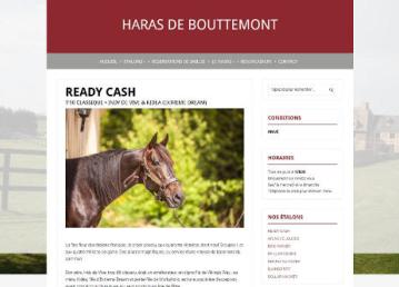 HARAS Ready Cash